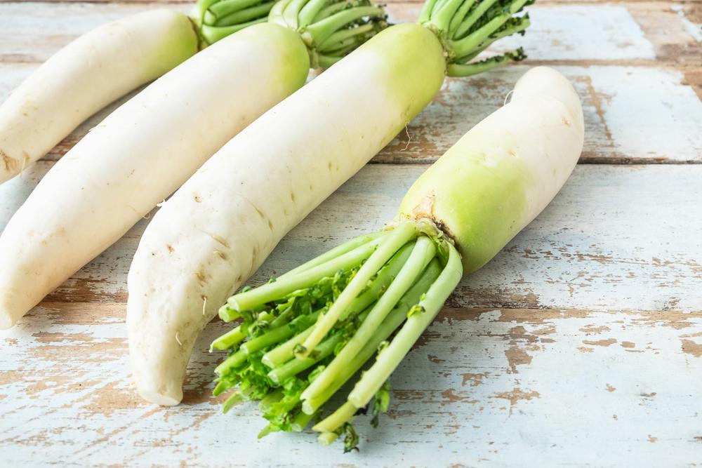 夏に種まきする野菜はどれ?初心者でも失敗しにくいオススメの種類